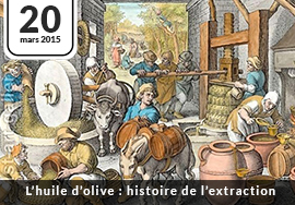 Histoire extraction huile d'olive