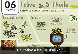 Processus fabrication huile d'olive