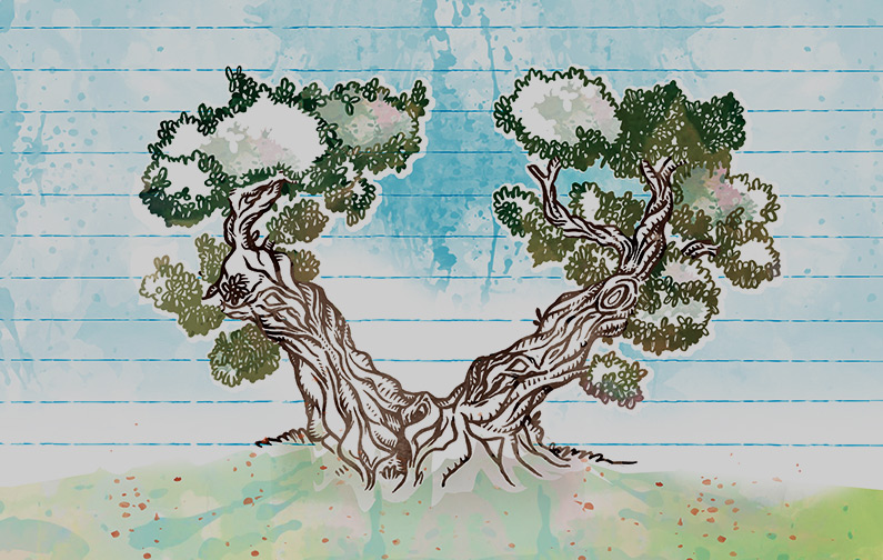 Coloriage Arbre Dolive.J Apprends A Dessiner Un Olivier Tutoriel Photo En Quelques Etapes